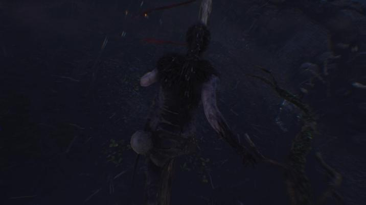 Hellblade: Senua's Sacrifice™_20181019221849