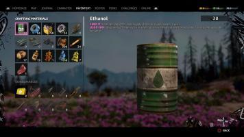 Far Cry® New Dawn_20190215160831